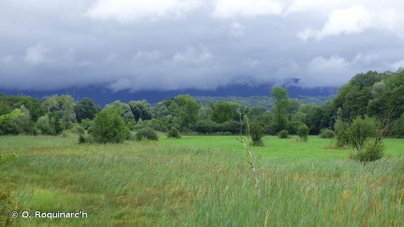 Rives sud du lac du Bourget