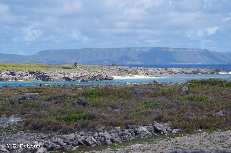 Iles de la Petite Terre