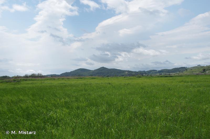 Basse plaine de l'Aude