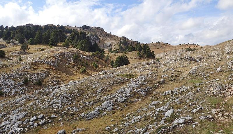 Hauts plateaux sud du Vercors