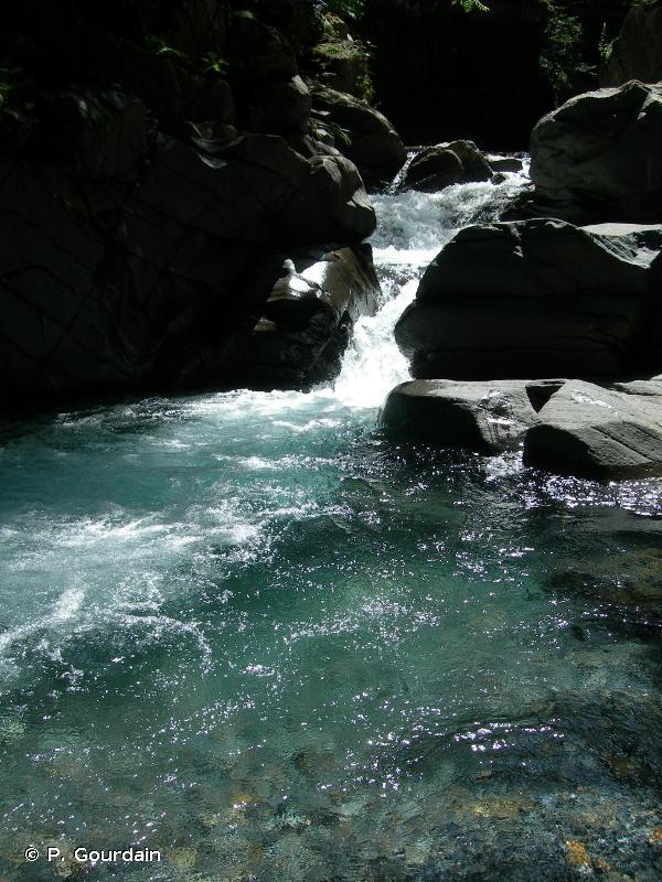 C2.2 - Cours d'eau permanents, non soumis aux marées, à écoulement turbulent et rapide - EUNIS