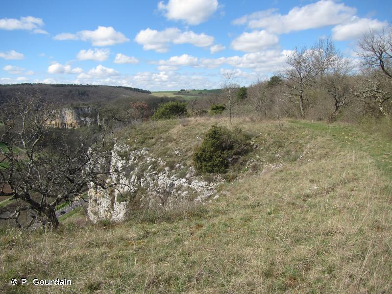 Pelouses, forêts et habitats à chauve-souris du sud de la vallée de l'Yonne et de ses affluents
