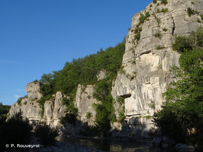 8210 - Pentes rocheuses calcaires avec végétation chasmophytique - Habitats d'intérêt communautaire