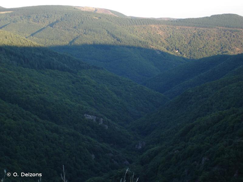 Crêtes et pièmonts de la Montagne Noire