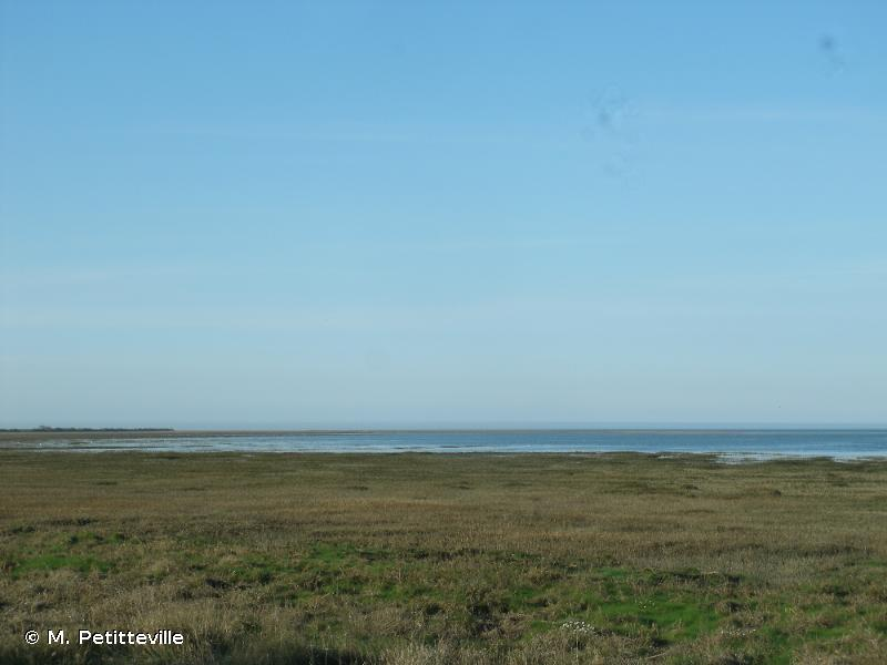 Marais Du Cotentin Et Du Bessin, Baie Des Veys