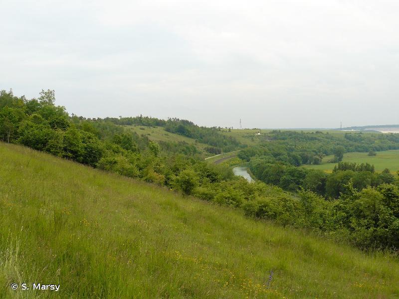 Vallée de la Meuse (secteur Sorcy Saint-Martin)