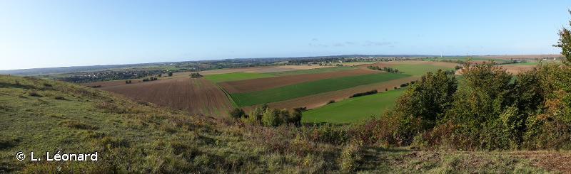 Coteau De Mesnil Soleil