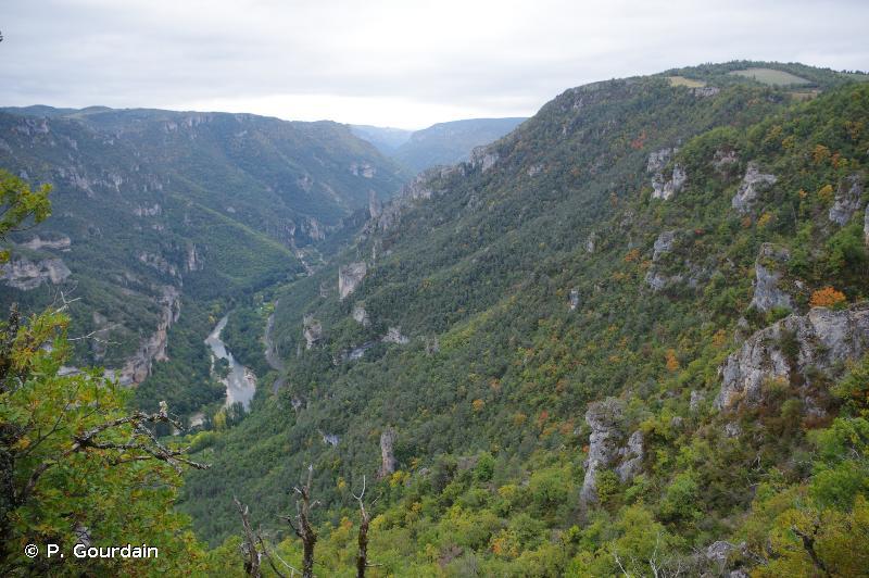 Versant sud du Causse de Sauveterre, de la Malène au cirque des Baumes