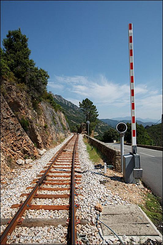 86.43 - Voies de chemins de fer, gares de triage et autres espaces ouverts - CORINE biotopes