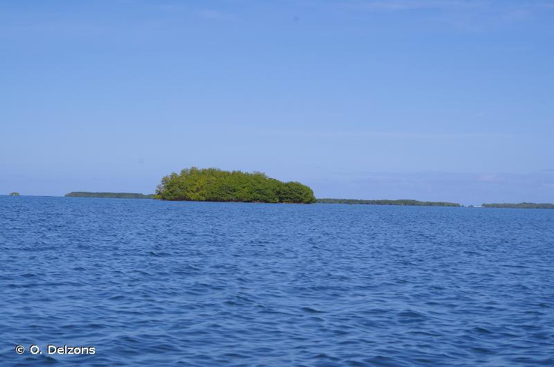Grand Cul De Sac Marin De Guadeloupe