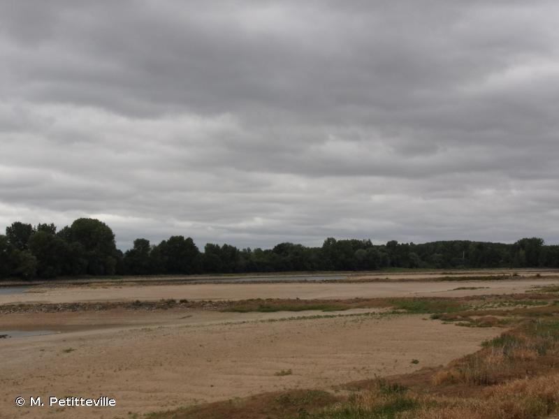 Vallée de la Loire de Nantes aux Ponts-de-Cé et ses annexes