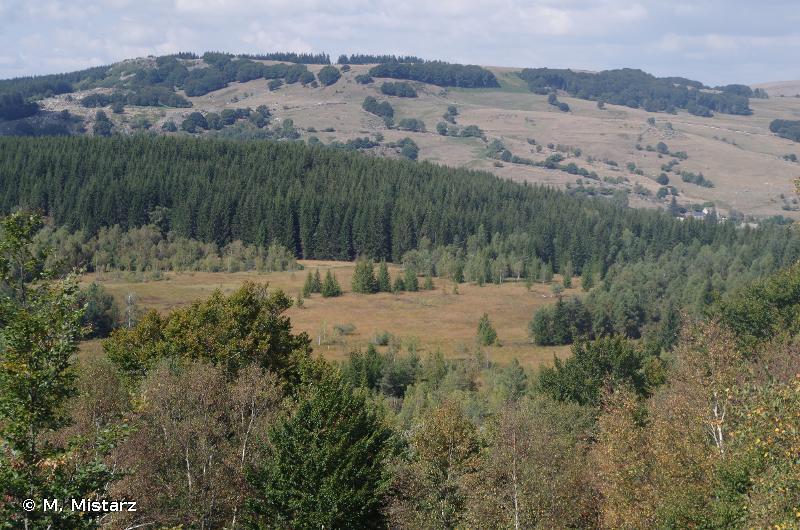 Tourbière de Pougalion