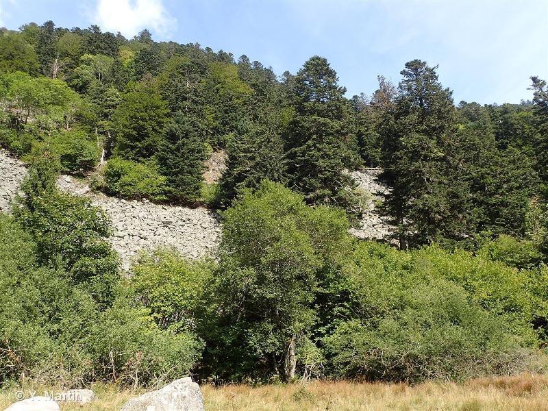 Hautes Vosges