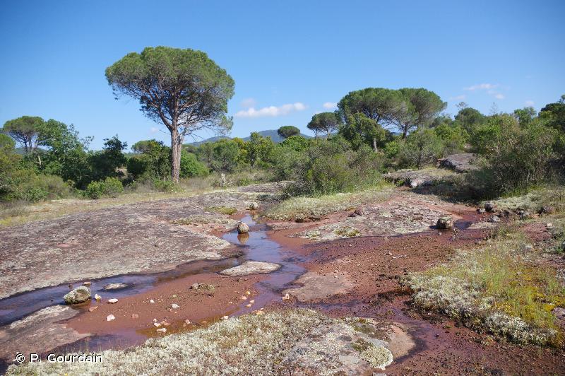La plaine et le massif des Maures