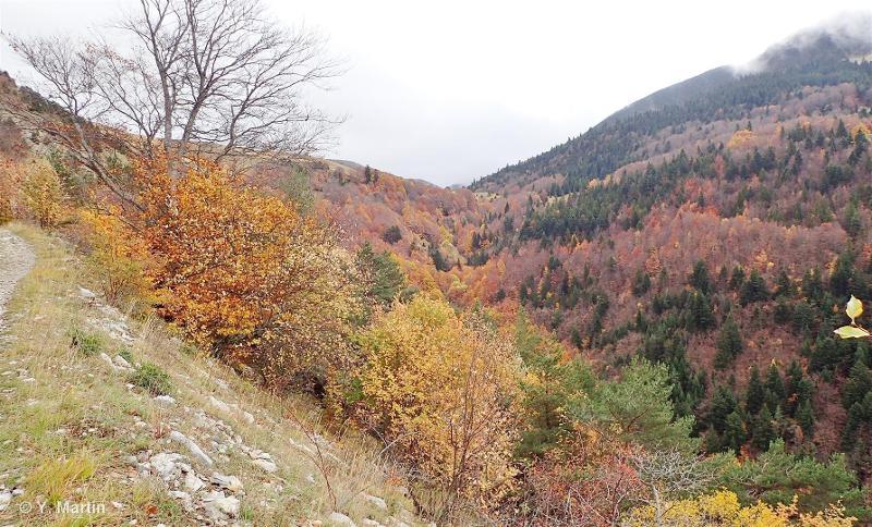 Montagnes de Bellemotte, Jocou, Mont Barral