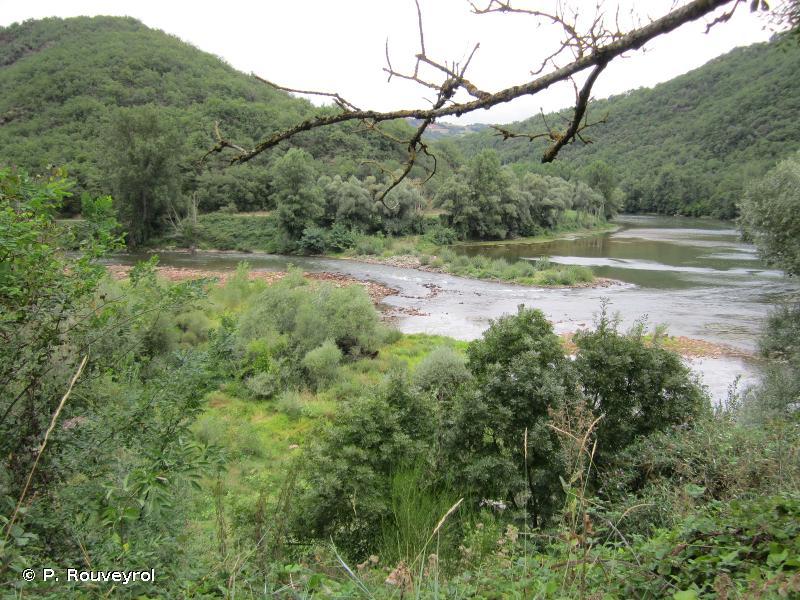 Vallée du Tarn (de Brousse jusqu'aux gorges)