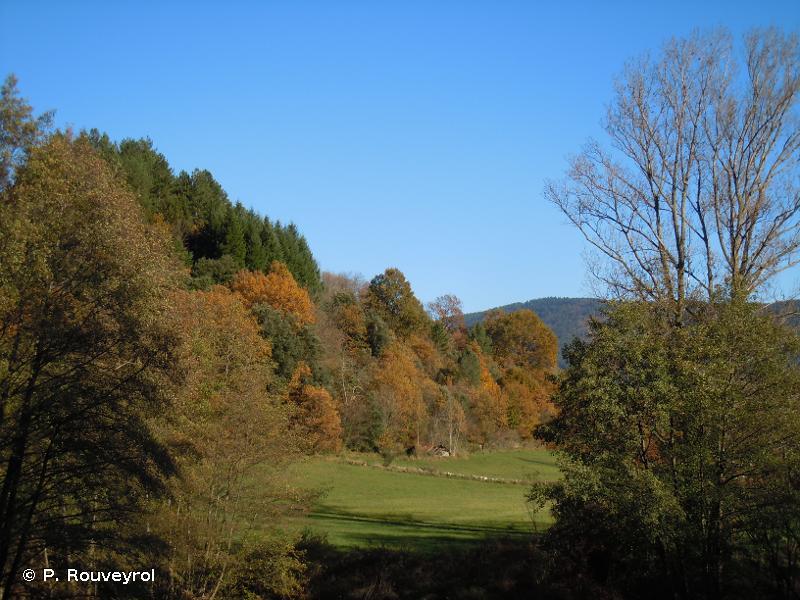 Hautes vallées de la Cèze et du Luech