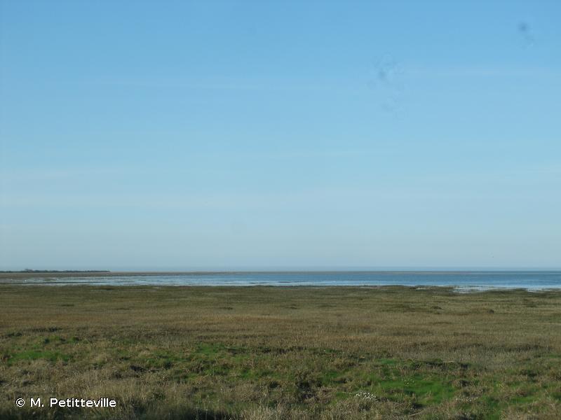 Basses Vallées du Cotentin et Baie des Veys