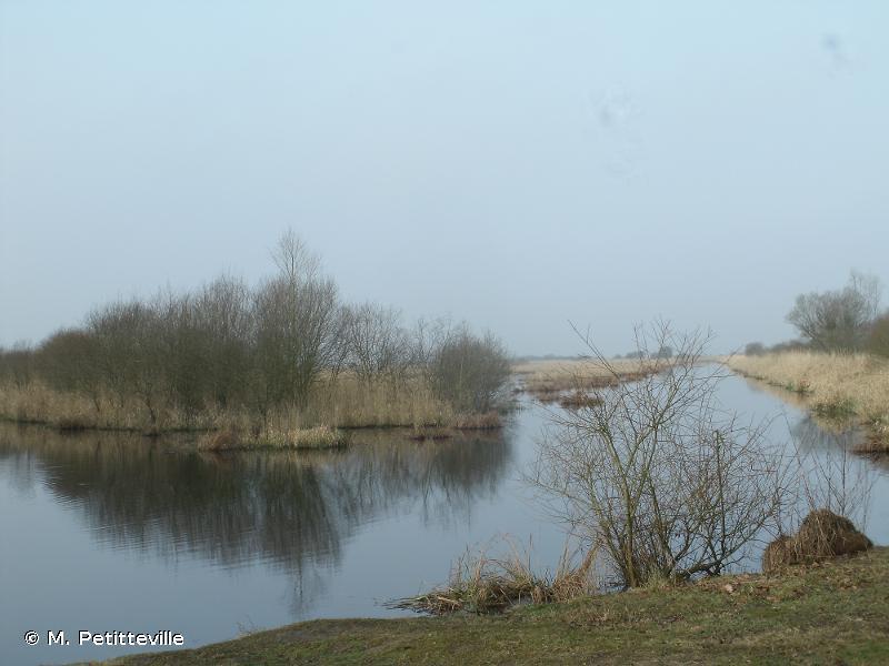 Grande Brière et marais de Donges