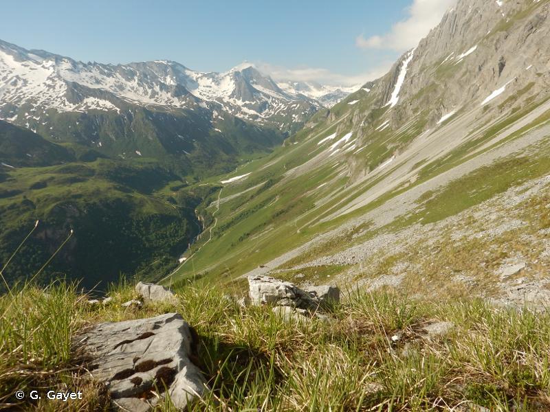 Le Petit Mont Blanc