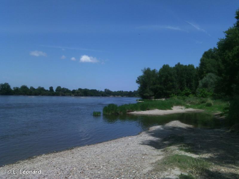 Vallées de la Loire et de l'Allier entre Mornay-sur-Allier et Neuvy-sur-Loire