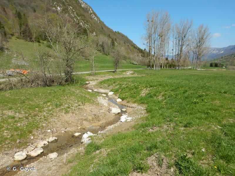 Marais de Nécuidet