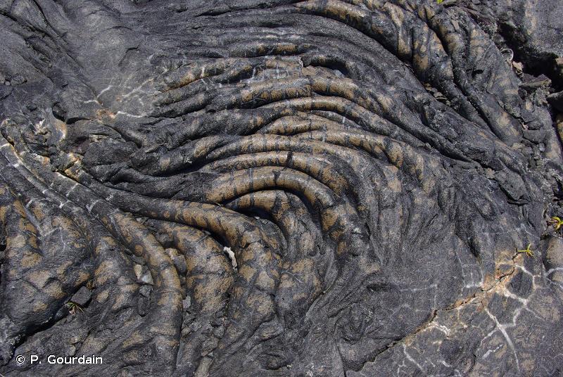 R66.911 - Champs de laves récents (Réunion) - Habitats CORINE biotopes de La Réunion (2000, rév. 2010)