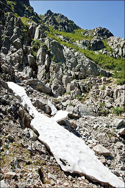 63 - Neiges et glaces éternelles - CORINE biotopes