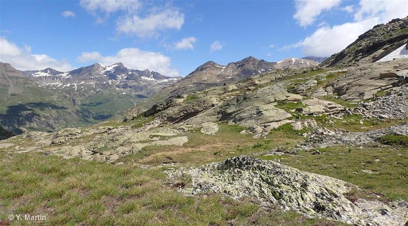 Réseau de vallons d'altitude à Caricion