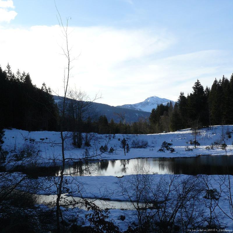 Lac Luitel