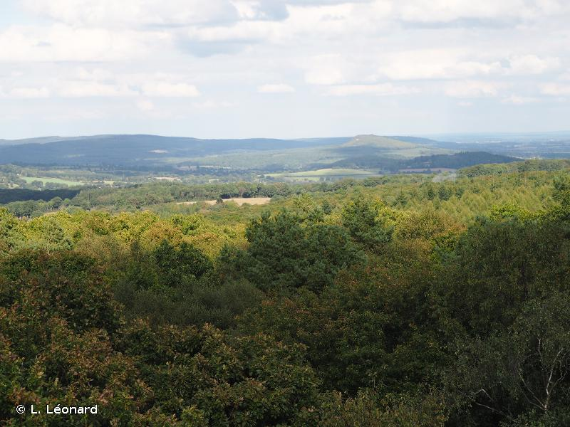 Forêt de Multonne, corniche de Pail