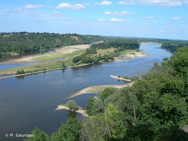 13.1 - Fleuves et rivières soumis à marées - CORINE biotopes