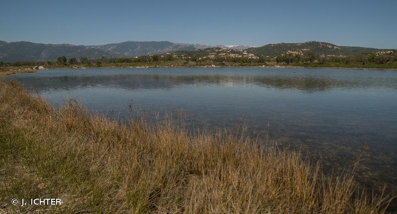 Baie de San Ciprianu : étangs d'Arasu et îles San Ciprianu et ilot Cornuta