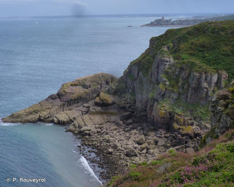 1230 - Falaises avec végétation des côtes atlantiques et baltiques - Habitats d'intérêt communautaire
