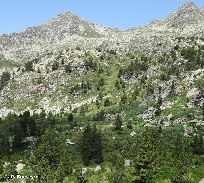 Massif de l'Aston et haute vallée de l'Ariège