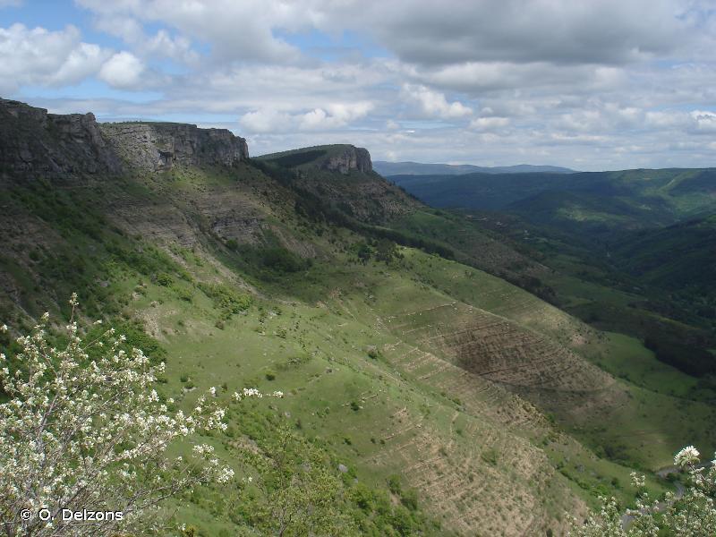 Contreforts oriental du Causse Méjean entre Ferreyrettes et Fraissinet-de-Fourques
