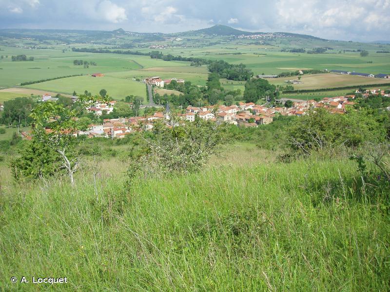 Vallées et côteaux xérothermiques des Couzes et Limagnes
