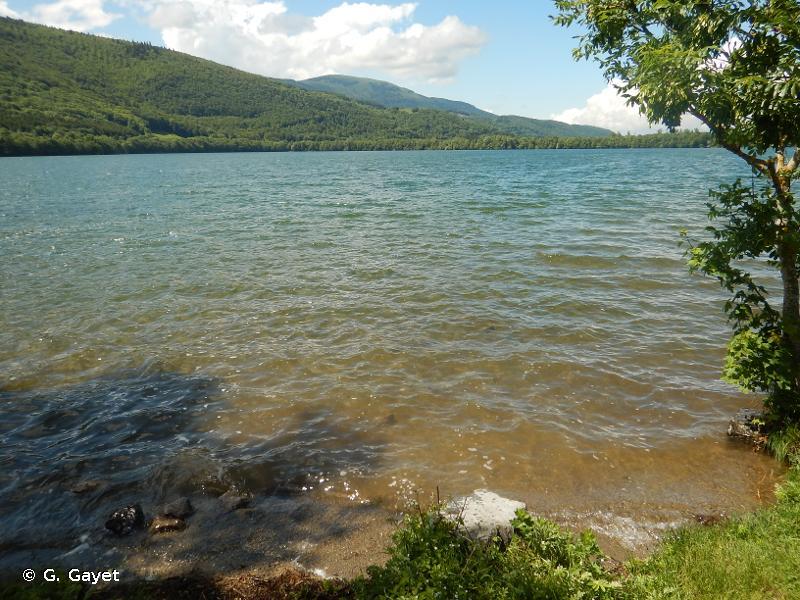 Tourbières et Lac de Pierre Châtel