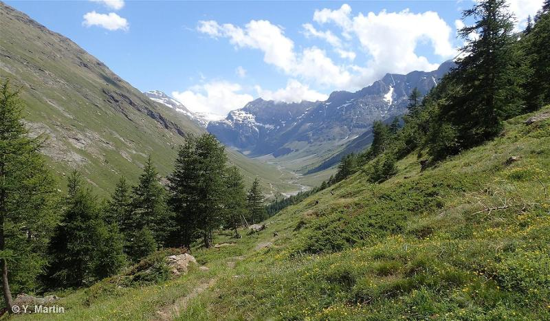 Vallée du Ribon