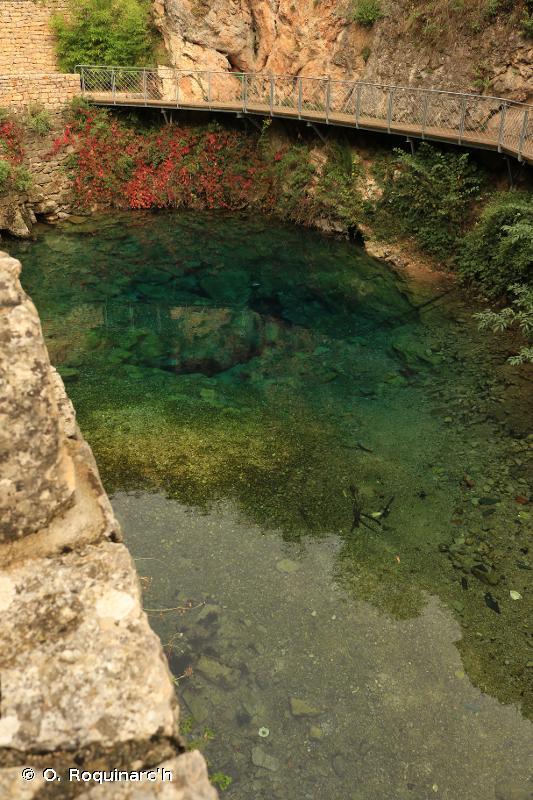 C2.1 - Sources, ruisseaux de sources et geysers - EUNIS