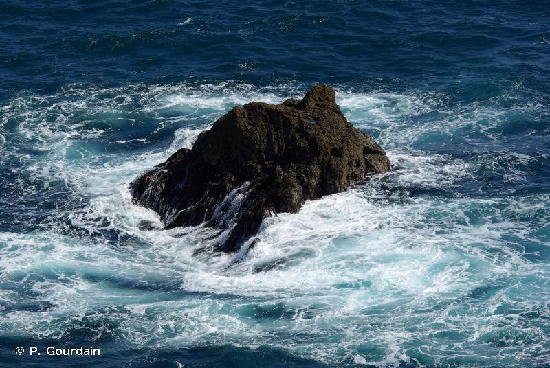 B3.2 - Falaises, corniches, rivages et îlots rocheux sans végétation - EUNIS