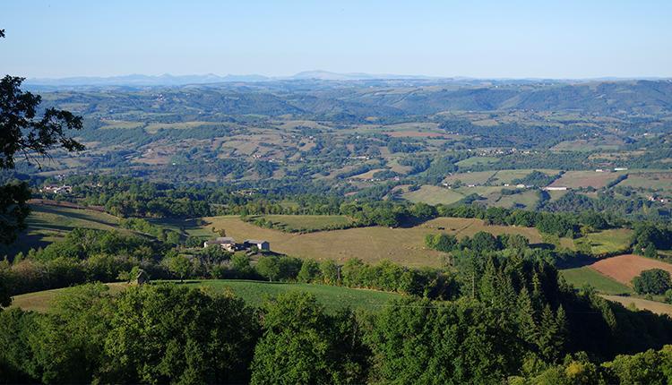 Réseau de haies en Aveyron © P. Gourdain