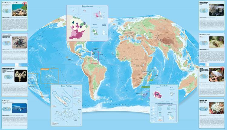 Carte Panorama de la biodiversité et des espaces protégés en France © IGN