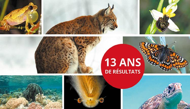 © UICN Comité français, OFB & MNHN