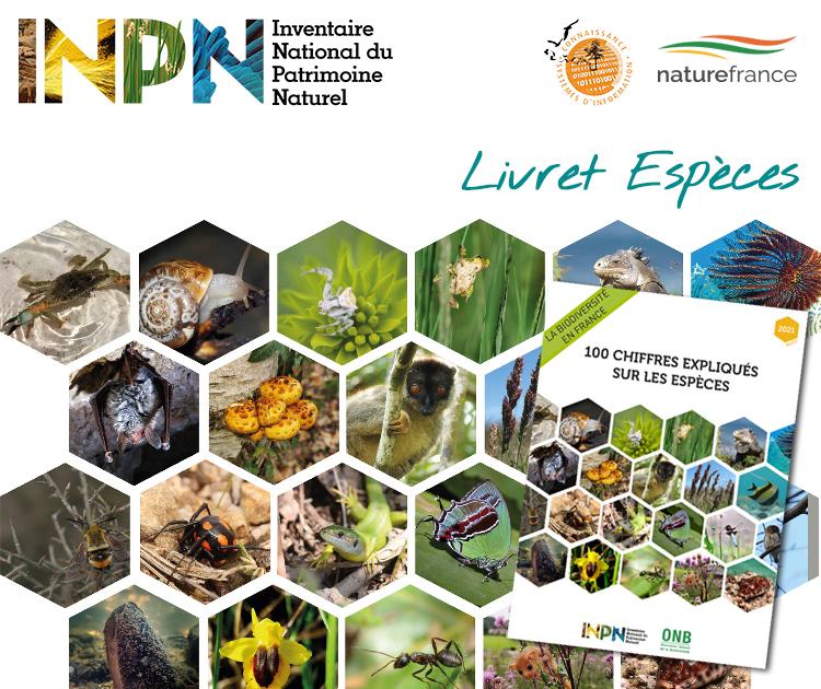 Couverture du Livret 100                                            chiffres expliqués sur les                                            espèces 2021es © INPN