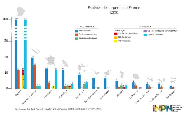 Espèces de serpents en France