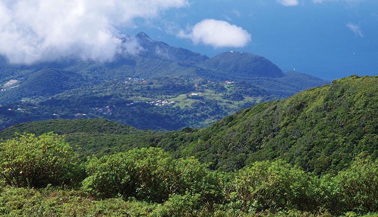 Parc national de la Guadeloupe © O. Delzons