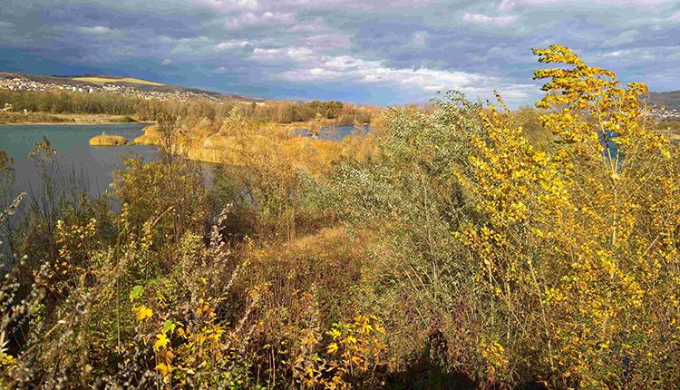 Parc écologique © Catherine Brugel / OFB