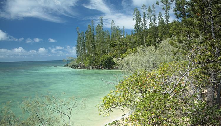 Parc naturel de la mer de Corail © Hélène Udo / OFB