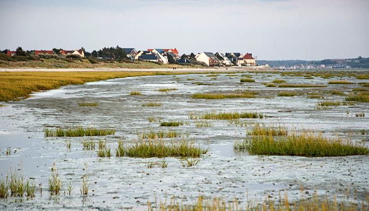 Baie de Somme © 0x010C CC BY-SA 4.0